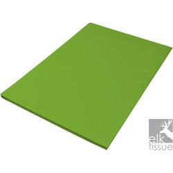 Elk Tissue Paper 500x750mm Verte Pomme 500 Sheets Ream